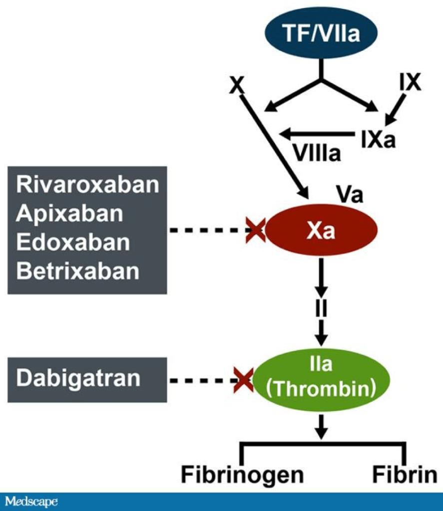medscape diagram