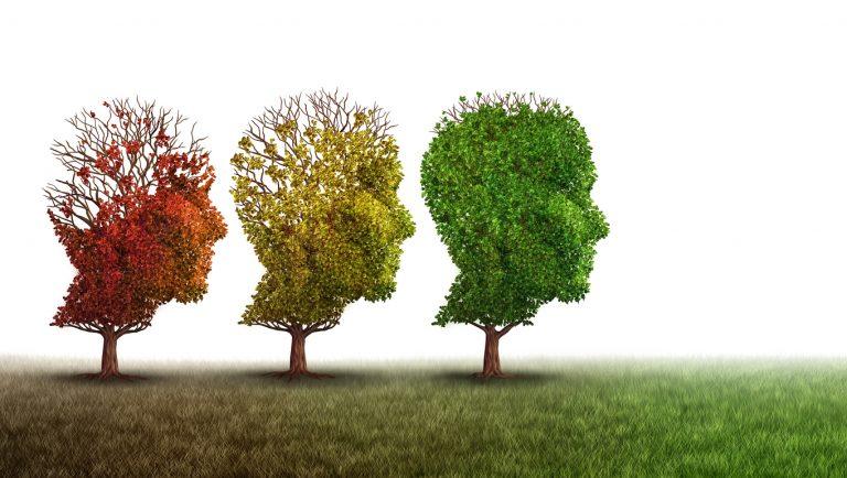 Cognitive rehabilitation concept