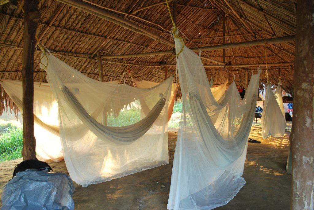 Mosquito net hammocks